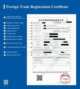 Trading company's Certificate – Import & Export License